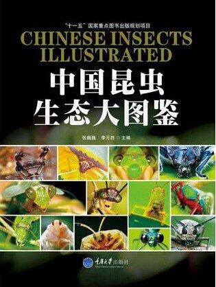 《中国昆虫生态大图鉴》[PDF]全彩版