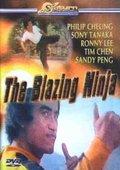 The Blazing Ninja 海报