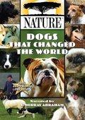 PBS:自然.狗改变世界