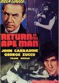 Return of the Ape Man 海报