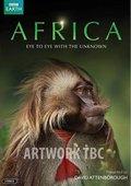 BBC:非洲 海报
