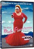 粉红色的火烈鸟 海报