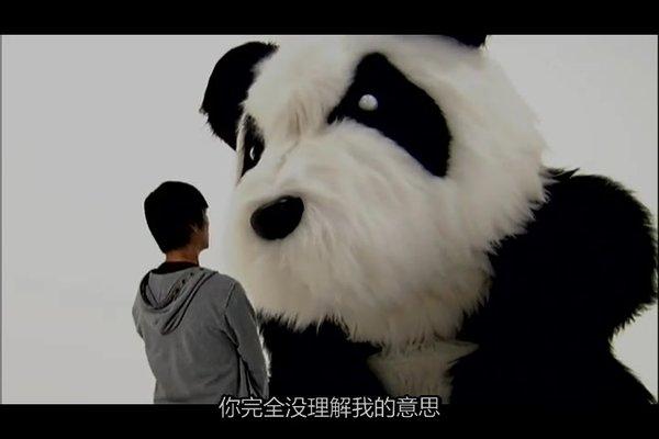 动物海报英语熊猫