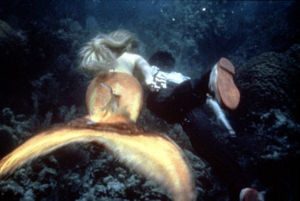 现代美人鱼 splash高清图片