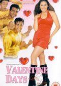 Valentine Days 海报