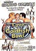 金鱼缸里的爱情 海报