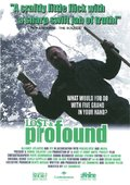 Lost & Profound 海报