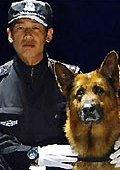 警·犬 海报