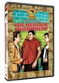 The Delicate Delinquent 海报
