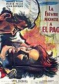 帕欧的火山 海报