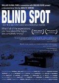 Blind Spot 海报