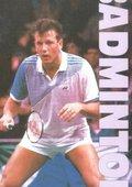 Badminton 海报