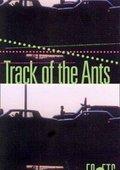 El camino de las hormigas 海报