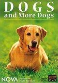 PBS:狗的起源与演化