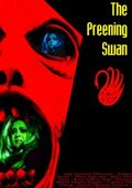 The Preening Swan 海报