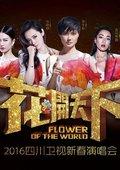 2016四川卫视跨年晚会 海报