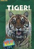 Tiger! 海报