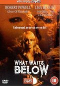 What Waits Below 海报