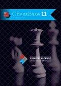 国际象棋11