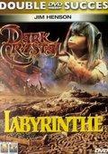Labyrinth 海报