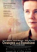 橙子与阳光 海报