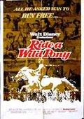 Ride a Wild Pony 海报