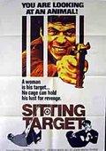 Sitting Target 海报