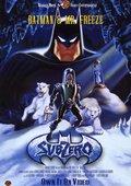 蝙蝠侠之冰点危机 海报