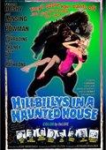 Hillbillys in a Haunted House 海报