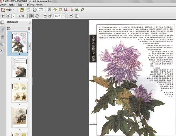 《工笔画线描花卉画谱 菊花篇》扫描版[pdf]