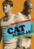 Cat Burglar 海报