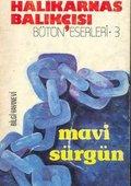 Mavi Surgun 海报