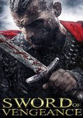 复仇之剑 海报