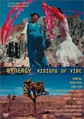 Synergy: Visions of Vibe 海报