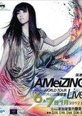 张惠妹Ameizing世界巡回演唱会2011-2013