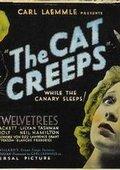 The Cat Creeps 海报