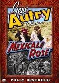 Mexicali Rose 海报