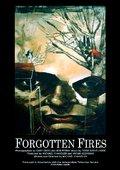 Forgotten Fires 海报