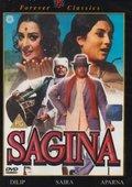 Sagina 海报
