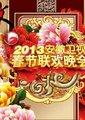 2013安徽卫视春节联欢晚会