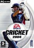 板球2004