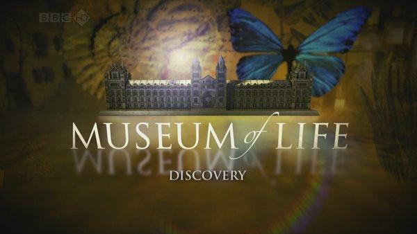 BBC纪录片《生命博物馆.Museum Of Life.2010》
