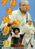 少林活宝贝 海报