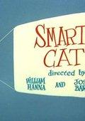 Smarty Cat 海报