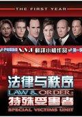 法律与秩序:特殊受害者 第九季 海报