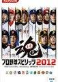 职业棒球之魂2012