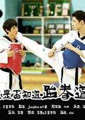 你是否知道跆拳道 海报