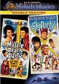 Ski Party 海报