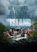 孤岛求生 海报