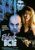 Black Ice 海报